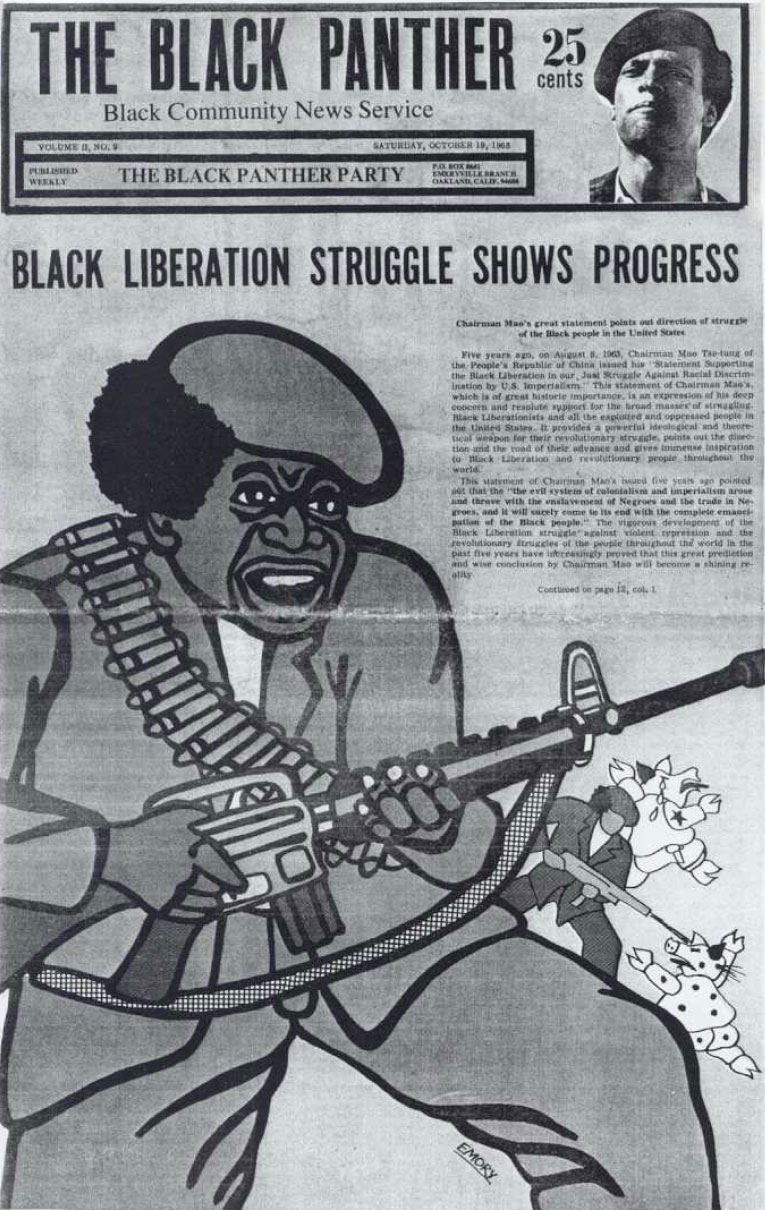 black_liberation_struggle.jpg